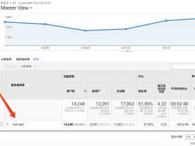 "Google Analytics(分析)中""not set""这个值是什么意思?"